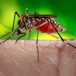 Attitudes towards Zika virus infection among medical doctors in Aceh province, Indonesia